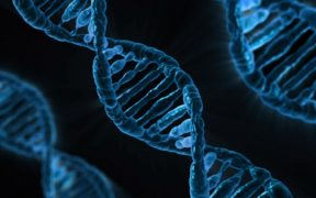 A New Method that Could Help Scientists Create Genes 'Overnight'